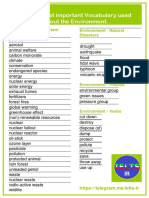 Environment Vocab.pdf