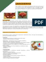 GANODERMA descripcion.docx