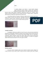 histologi sarapp.docx