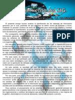 Sistema de Informacion Gerencial Rafael