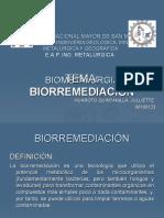 BIORREMEDIACION.ppt