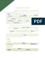 Definición y Objetivos de La Auditoria