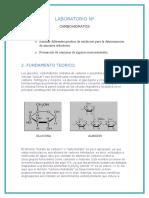 Carbohidratos-5 Org II