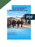 TEXTO GUIA DE CONCRECIÓN DE PSP.docx