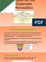 Producción Del Glutamato Monosódico