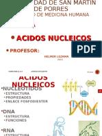 Acidos Nucleicos USMP 2016