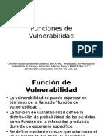Funciones de Vulnerabilidad