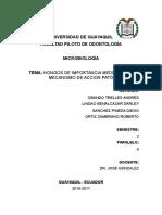 Hongos Expo Micribiologia 2016