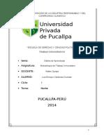 ESTILOS DE APRENDIZAJE.docx