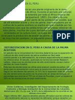 Deforestacion en El Peru-david
