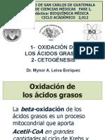 11. Oxidación de Ácidos Grasos y Cetogénesis.pdf
