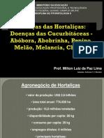Doencas de Hortalicas.pdf