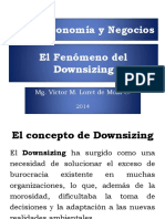 19_-Downsizing.pdf