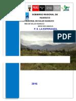 ASIS P.S. LA ESPERANZA 2015 MELI.docx