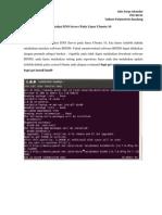 Instalasi DNS Server Pada Linux Ubuntu 10