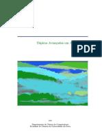 AlgoritimoAvancado.pdf