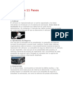 Proceso de 11 Pasos.pdf