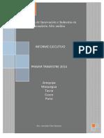 Informe Ejecutivo Primer Trimestre 2014 Programa de Innovación e Industria en Ganadería Alto Andina Mvz. Alexander Chire Bernedo