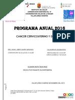PLAN DE TRABAJO PAR CANCER CERVICOUTERINO Y MAMA.pdf