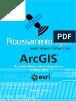 Apostila_Basica_de_Cartografia_ArcGIS102.pdf