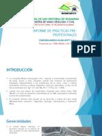 Informe de Prácticas Pre-profesionales_franco