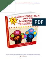 3-piliers-ESSENTIELS-pour-une-infoentreprise-TRIOMPHANTE.pdf