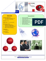 Six Sigma Executive Overview - eXample Consulting Group brochure