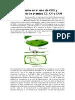 Eficiencia en El Uso de CO2 y Morfología de Plantas C3