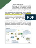 EL AGUA EN LAS PLANTAS.pdf