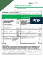 Actividad-Estudio-de-Mercado-Módulo-2 (1).pdf
