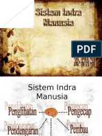 Sistem Indra
