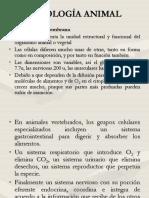 FISIOLOGÍA A LA MEMBRANA CELULAR.pdf