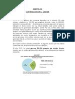 CONTRIBUCION DE LA MINERIA.docx
