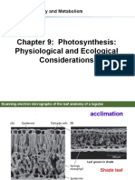 Chapter9 Photosynthesis Physiological and Ecological Considerations