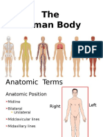 Human Body Jan 24 for emts