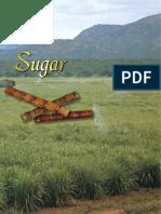 Sugar 06