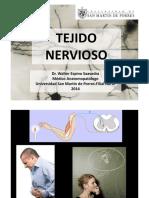 220367671-Sistema-Nervioso-2014