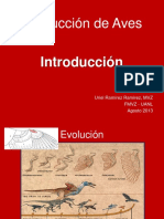 Produccion Aves General