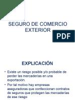 Contrato de Seguro de Mercaderio (2)