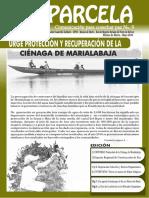 Parcela Informativa Montes de María No9