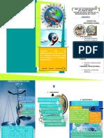 TRIPTICO DERECHO INTERNACIONAL PUBLICO.docx