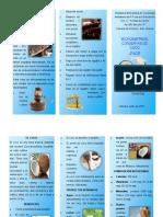 triptico sobre el coco.pdf