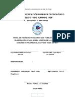 Informe Final SUero Lacteo