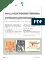 Fichas de Ortopedia