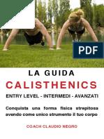 Guida Calisthenics 16