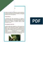 PRACTICA 11 AGROTECNIA.docx