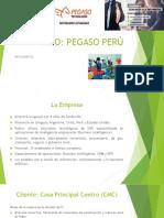 Caso Pegaso Peru