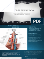 Clases de Tumores de Esofago 2015 2