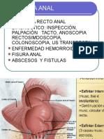 25. Patología ano rectal - Dr. Larauri