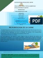 Microo Carne Expo